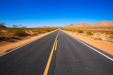 mohave: Mohave desert by Route 66 in California Yucca Valley USA