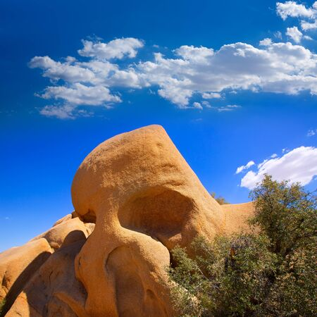 Skull rock in Joshua tree National Park Mohave desert Yucca Valley California USA photo