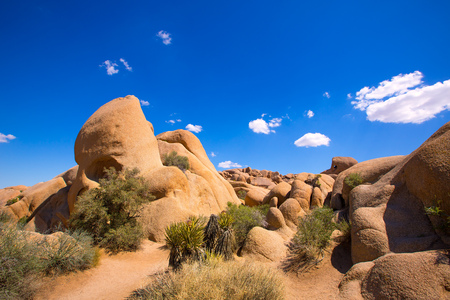 mohave: Skull rock in Joshua tree National Park Mohave desert Yucca Valley California USA Stock Photo