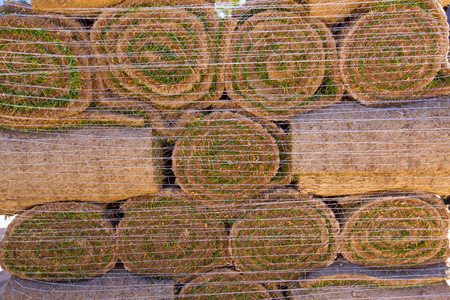 Natural grass turf lawn in rolls stacked in rows photo