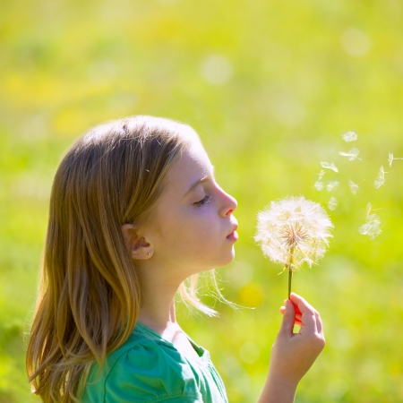 Blond kid girl blowing dandelion flower in green meadow outdoor profile view Stock Photo