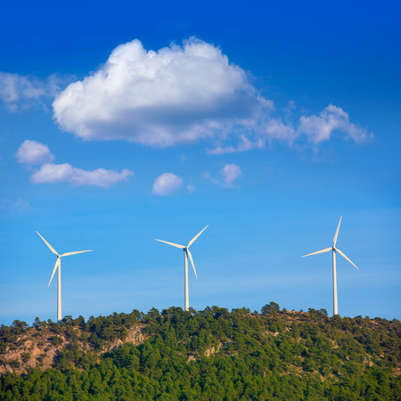 Aerogenerator windmills in the mountain top in a pine tree forest photo