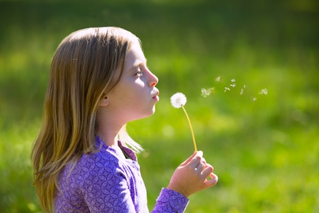 Blond kid girl blowing dandelion flower in green meadow outdoor profile view photo