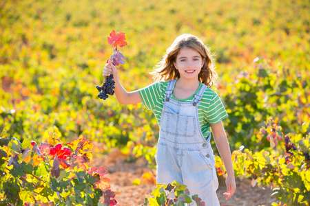 Kid girl in happy autumn vineyard field holding red leaf grapes bunch in hand photo