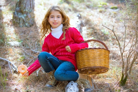 kid girl searching chanterelles mushrooms with basket in autumn forest photo
