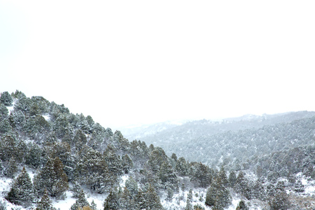 sierra snow: Nevada USA spring first snow in the mountains Stock Photo