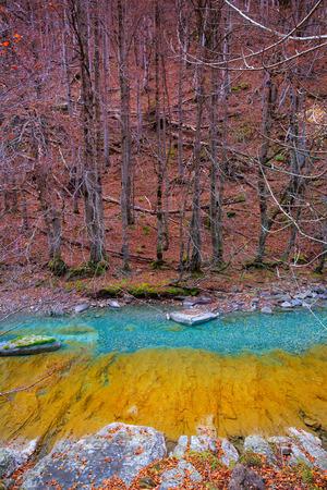 ordesa: Arazas river Valle de Ordesa valley Pyrenees Huesca Aragon at Spain