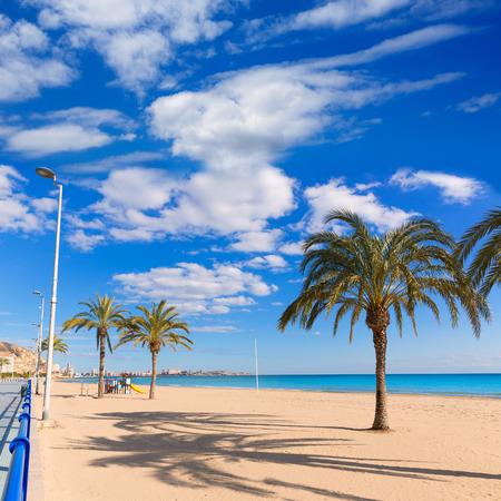 alicante: Alicante Postiguet beach at Mediterranean sea in Spain palm trees