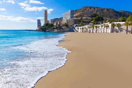 san juan: Alicante San Juan beach of La Albufereta with palms trees in Mediterranean Spain
