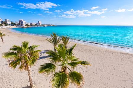 juan: Alicante San Juan beach of La Albufereta with palms trees in Mediterranean Spain