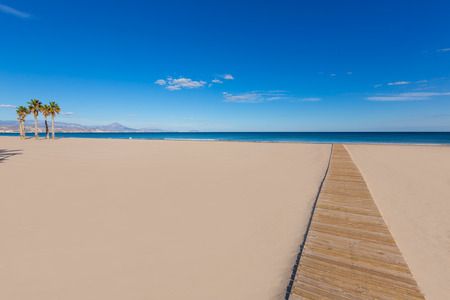 juan: Alicante San Juan beach with palms trees of Mediterranean sea at Spain valencian Community