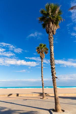 arenas: Valencia Malvarrosa Las Arenas beach palm trees in Patacona of Alboraya spain Stock Photo