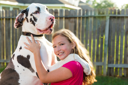 great dane stand up on kid girl shoulders playing together Stock Photo