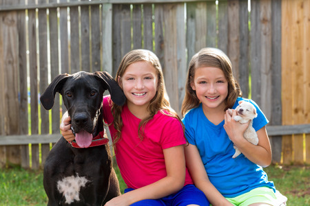Twin sisters puppy pet dog and great dane playing together photo