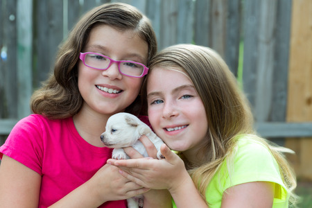 glass fence: kid girls playing with puppy pet chihuahua with doggy outdoor