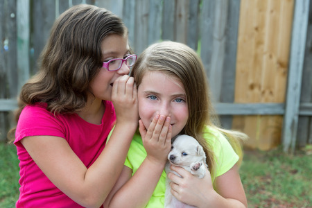 dido: kid girls playing with puppy pet chihuahua with doggy outdoor