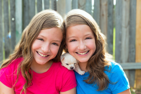 twin sister: Twin sisters and puppy pet dog chihuahua playing together with doggy
