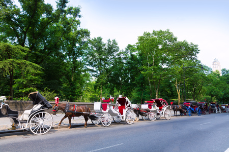 central park: Central Park horse carriage rides in Manhattan New York US