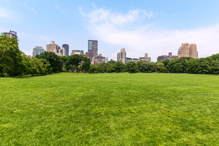 Central Park Sheep meadow Manhattan New York US Stock Photo