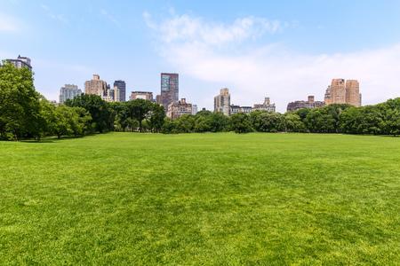 central park: Central Park Sheep meadow Manhattan New York US Stock Photo