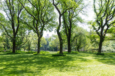 sights: Central Park The Mall Manhattan New York US Stock Photo