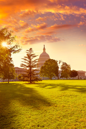 us government: Capitol building Washington DC sunset garden USA US congress Stock Photo