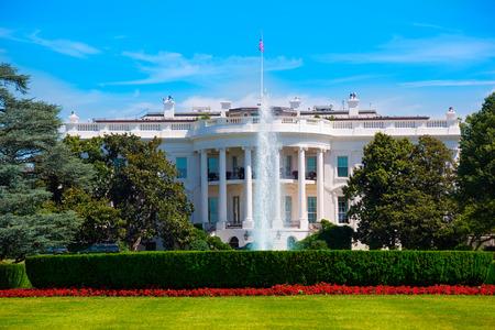 white house: The White House in Washington DC USA United States
