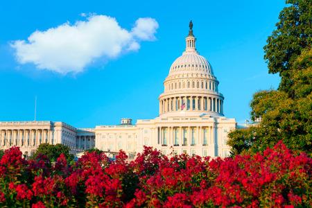 Capitole Washington DC soleil USA Congrès américain Banque d'images