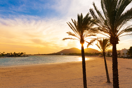 balearic: Alcudia Majorca at sunset on the beach Mallorca Balearic islands