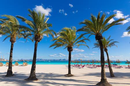 Plage de Majorque Platja de Alcudia dans les îles Baléares Majorque Banque d'images - 37622533
