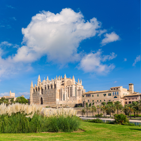 majorca: Majorca Palma Cathedral Seu Seo of Mallorca at Balearic Islands Spain