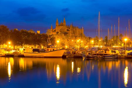 パルマ ・ デ ・ マリョルカ大聖堂、スペインのマヨルカ島バレアレス諸島のポートと日の出