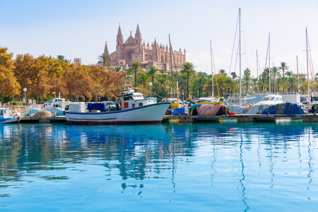 majorca: Palma de Mallorca port marina in Majorca with Cathedral church Balearic Islands