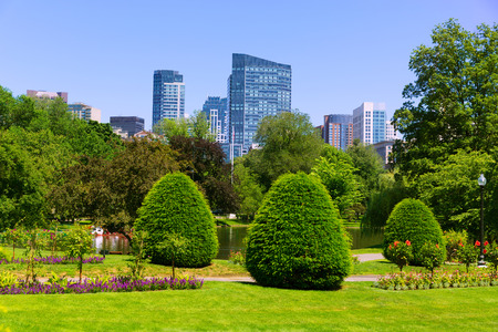 boston common: Boston Common park gardens and skyline in Massachusetts USA