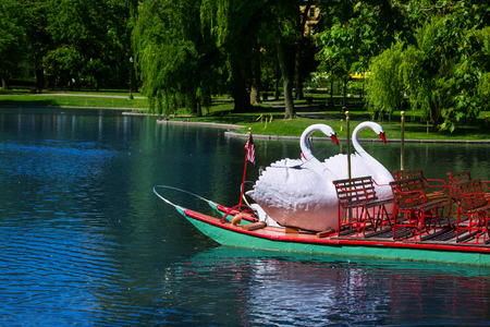 Boston Common public garden Swan boats in Massachusetts USA