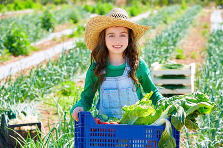 Litte kid farmer girl in vegetables harvest at orchard 스톡 콘텐츠