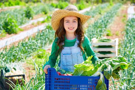 Litte kid farmer girl in vegetables harvest at orchard Standard-Bild