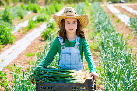 Litte kid farmer girl in onion harvest at orchard