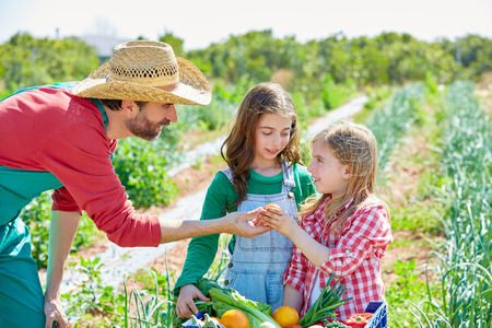 Farmer man showing vegetables harvest to kid girls in orchard Imagens - 38995262