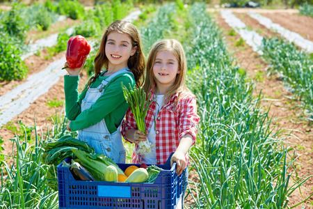 Litte kid farmer girls in vegetables harvest at orchard