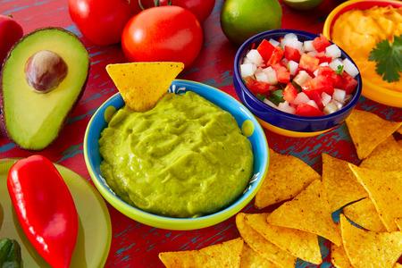 gallo: Mexican food nachos guacamole pico de gallo and dipping cheddar cheese Stock Photo