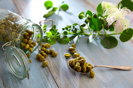 caper: Capers pickled with plant and caper plant flower on vintage spoon Stock Photo