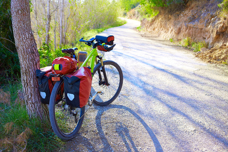 MTB Bicycle touring bike in a pine forest with pannier racks and saddlebag Фото со стока
