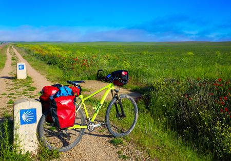 religion catolica: El Camino de Santiago en bicicleta con la muestra de la cáscara en los campos de cereales en Palencia España