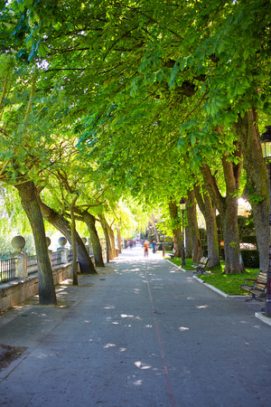 paseo: Burgos paseo espolon park trees in Castilla Spain Stock Photo