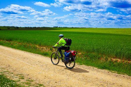 camino de santiago: Biker on The Way of Saint James in Castilla Leon cereal fields of Spain Stock Photo