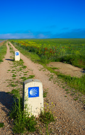 camino de santiago: The way of saint James with shell sign in cereal fields at Palencia Spain