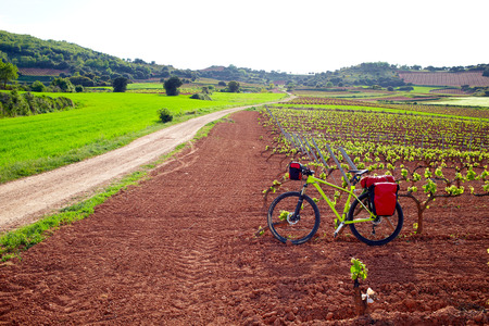 la rioja: La Rioja vineyard fields biking in The Way of Saint James with bike Stock Photo