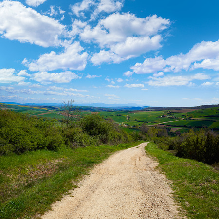 xacobeo: Montes de Oca track by the Way of Saint James in Castilla Burgos Stock Photo