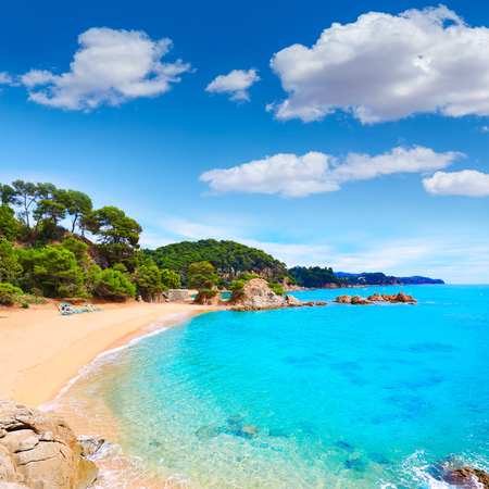 costa brava: Cala Treumal beach in Lloret de Mar at Costa Brava of Catalonia spaion
